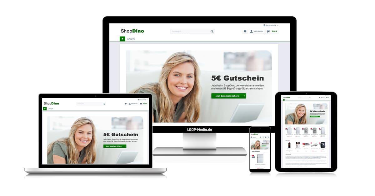 Online-Shop Erstellung